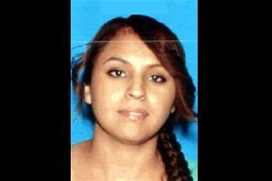 Hollywood Hills Woman's Death Latest in Increasing Suicides