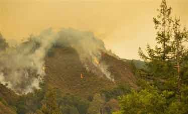 Most Of Big Sur Evacuated After Wildfire Spreads
