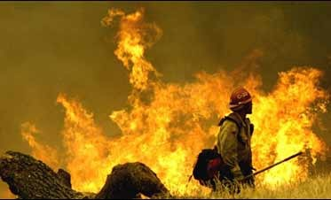 N. Calif. Wildfires Force Hundreds to Flee Homes