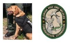 ODMP: Florida K9 Dies during Search