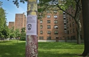 Suspect in Stabbing of New York Children Arrested