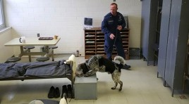 State Prison K-9 Officer First To Be Cellphone Detection Certified In U.S.