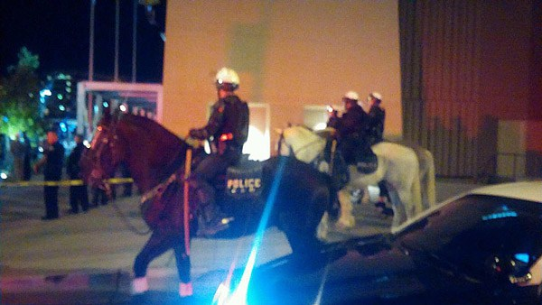 Boy Who Threw Rock At Police Horse Charged As Adult