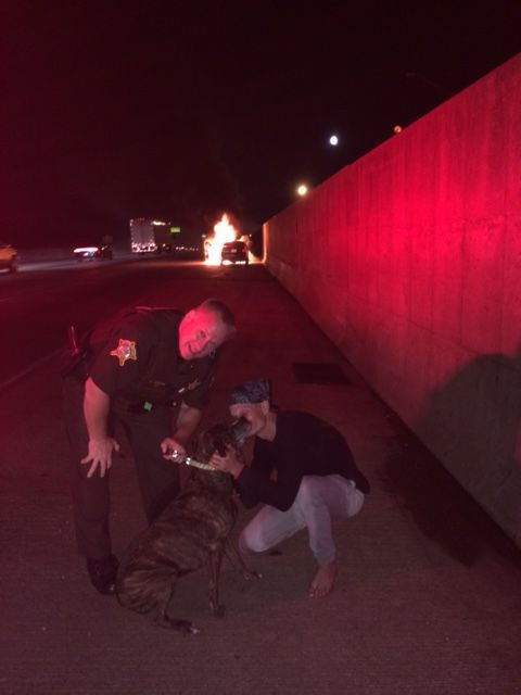 Sheriff's Deputy Rescues Dog From Burning Car