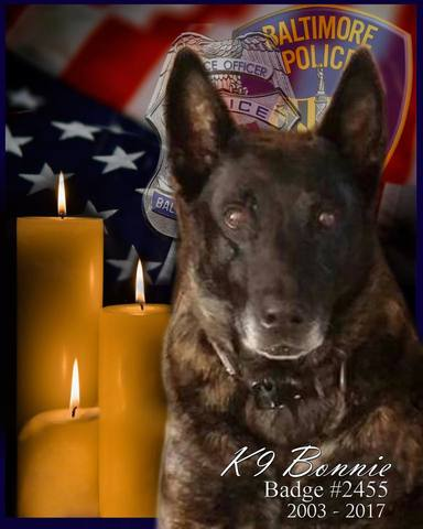 Baltimore Police K9 Dies