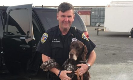 San Francisco Police Separate K9 And Handler