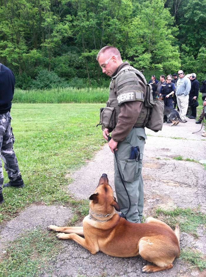 Administrative Support for K-9 Programs