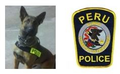 ODMP: Illinois K9 Killed