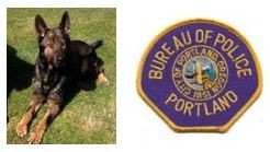 ODMP: Portland K9 Shot and Killed