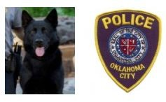 Oklahoma City K9 Fatally Stabbed