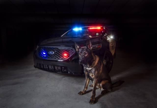 National Puppy Day & Law Enforcement
