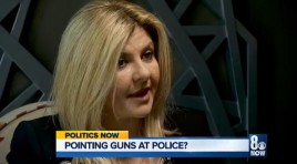 Lawmaker: It's Okay To Aim Guns At Cops If They Aim At You First