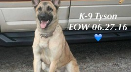 Indiana K9 Tyson Dies After Tracking Suspects