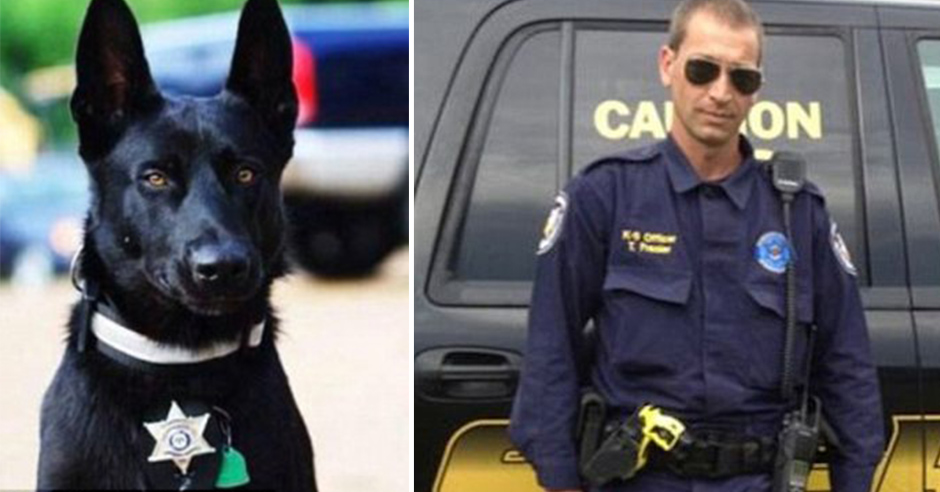 Police K9 Saves Life Of Partner After Being Ambushed By 3 Men