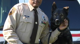 Two St. Louis County Police Dogs Die Of Natural Causes On Same Day