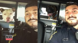 Cop Gives Lost Dogs a Ride, Tracks Down Owners By Posting Their Selfies Online