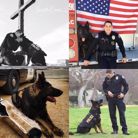 California K9 Dies In Line Of Duty