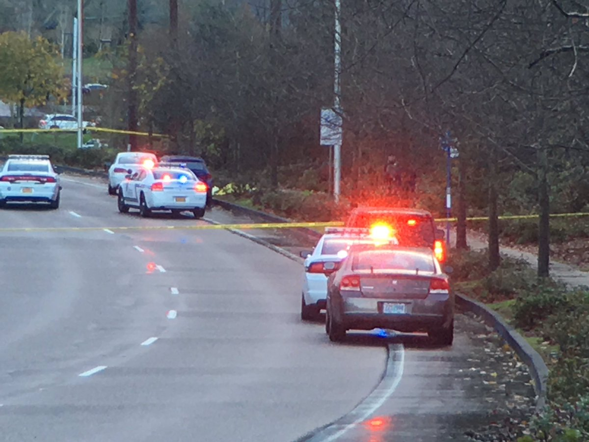 Oregon Deputy Shot While Investigating Traffic Collision