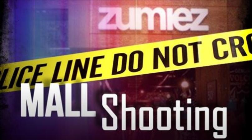 Man Who Shot Mall Robber Should Not Have Been Armed