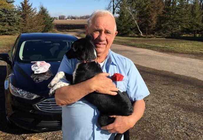 Sheriff Gets New Dog For Veteran Whose Puppy Was Shot