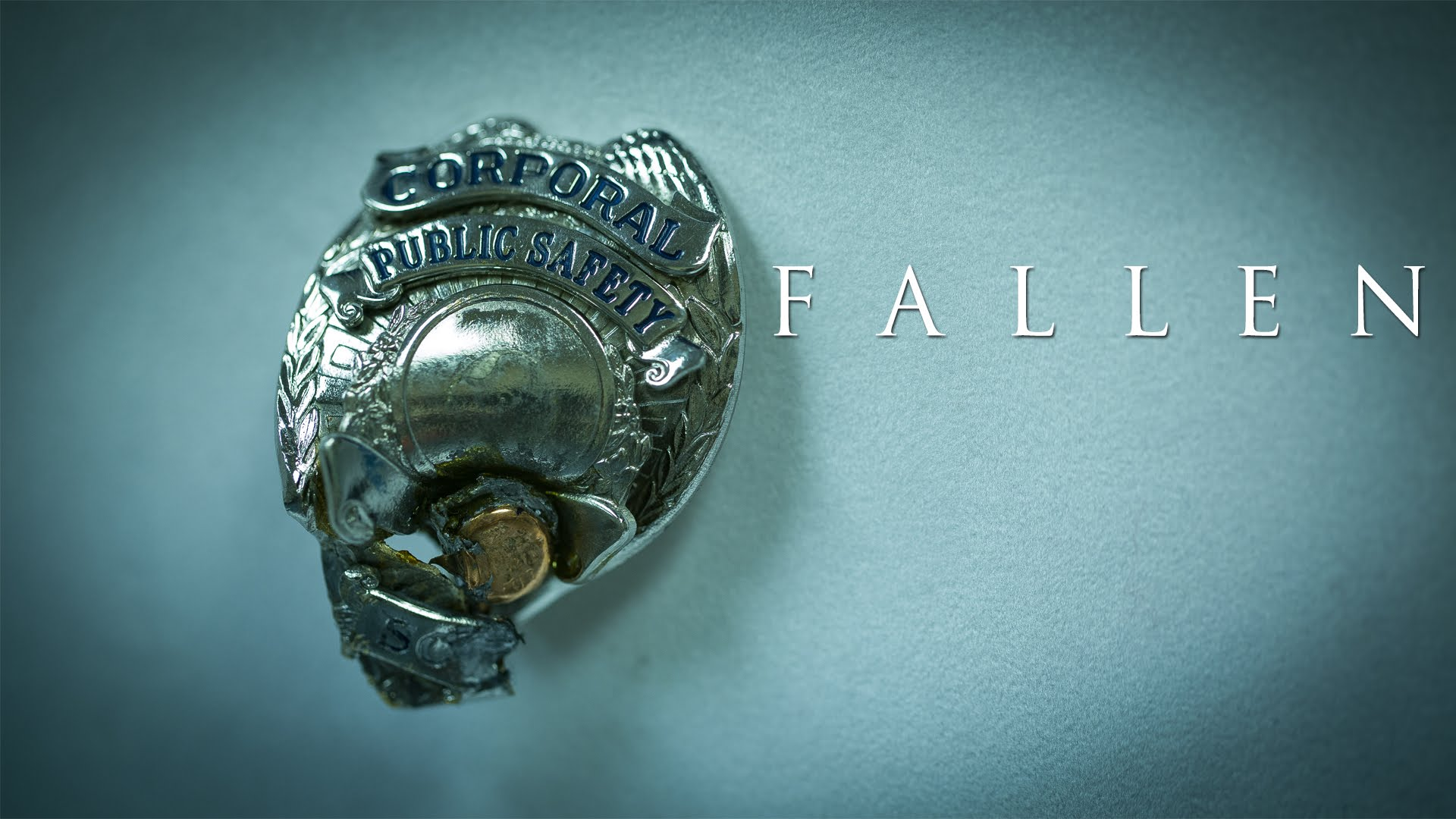 "Review Of The Documentary: ""Fallen"""