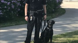 South Dakota Drug Dog Staying Home Because Of Costs To House Drug Prisoners