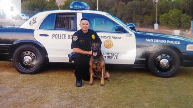 Man 'Acting Like a Bull' Stabs San Diego K9