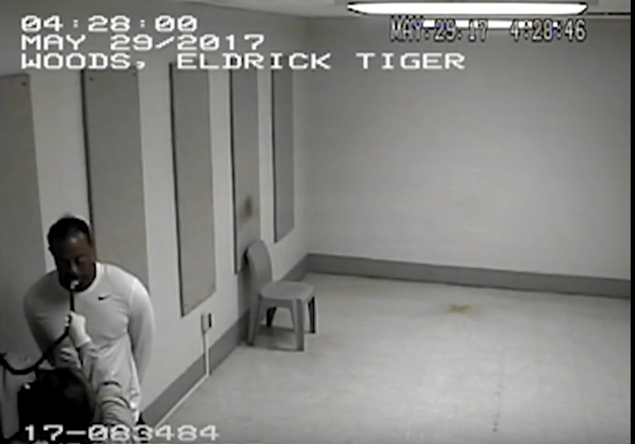 Watch Breathalyzer Test Given To Tiger Woods