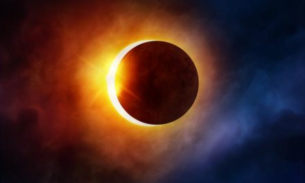 Woman Dies Watching The Eclipse After Car Struck Her