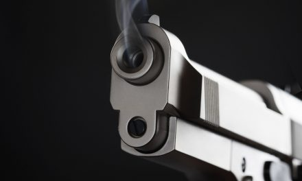 Warning Shots Part Of National Consensus Use Of Force Policy