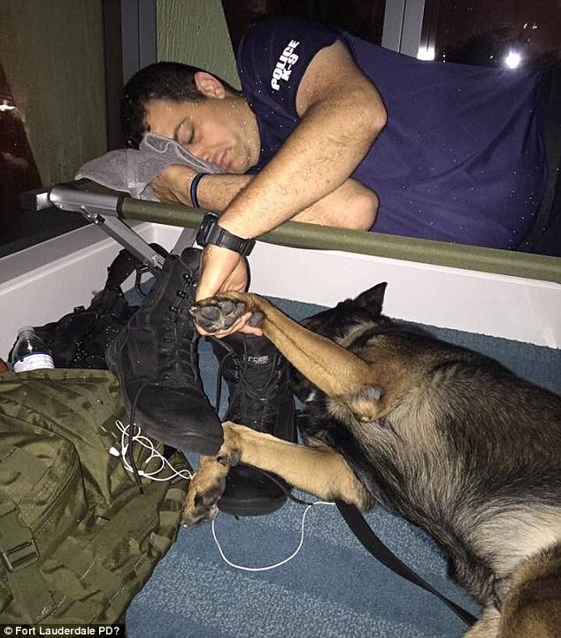 Florida Police Department Shares Heartwarming Photo: '#WeAreInThisTogether':