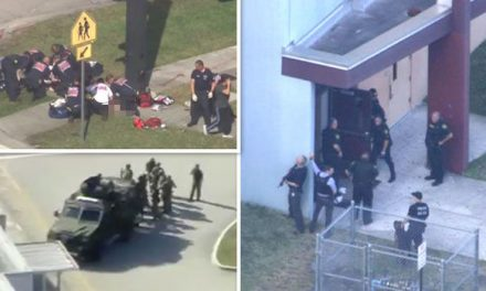 School Shooting Suspect In Custody, Numerous Fatalities