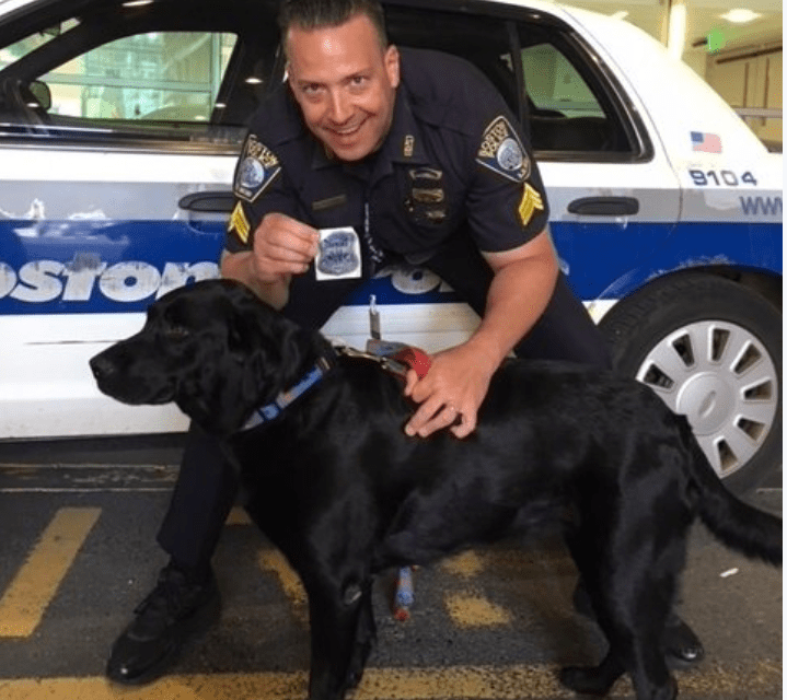 Boston Police Sergeant Deputizes Family Dog For a Day