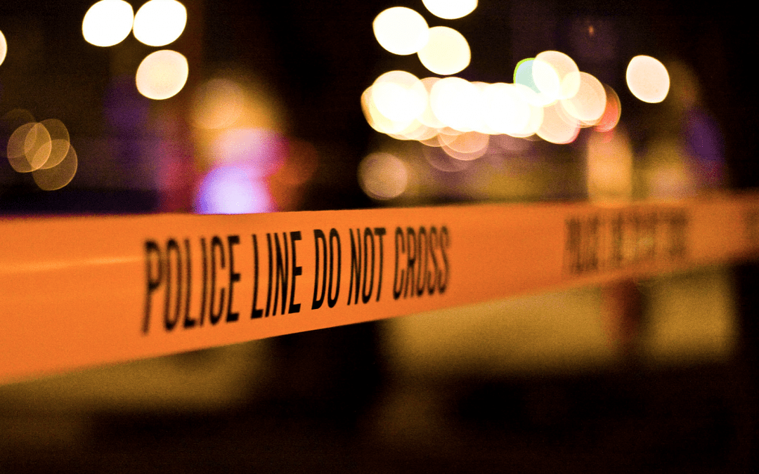 Felon fatally shot during violent struggle for firearm