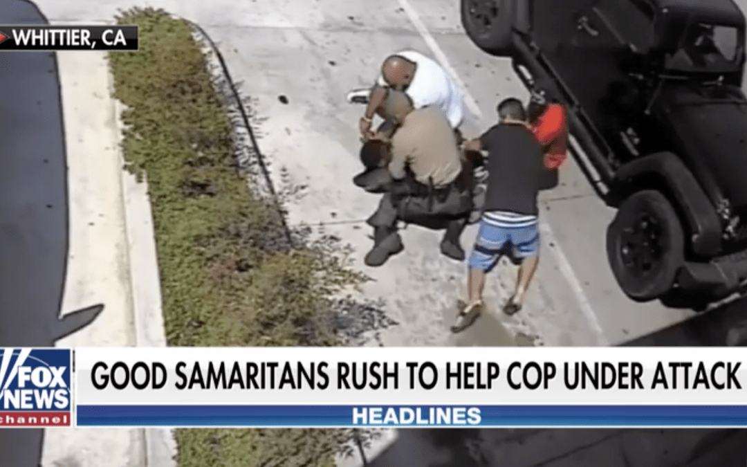 Good Samaritans aid deputy fighting combatant over firearm