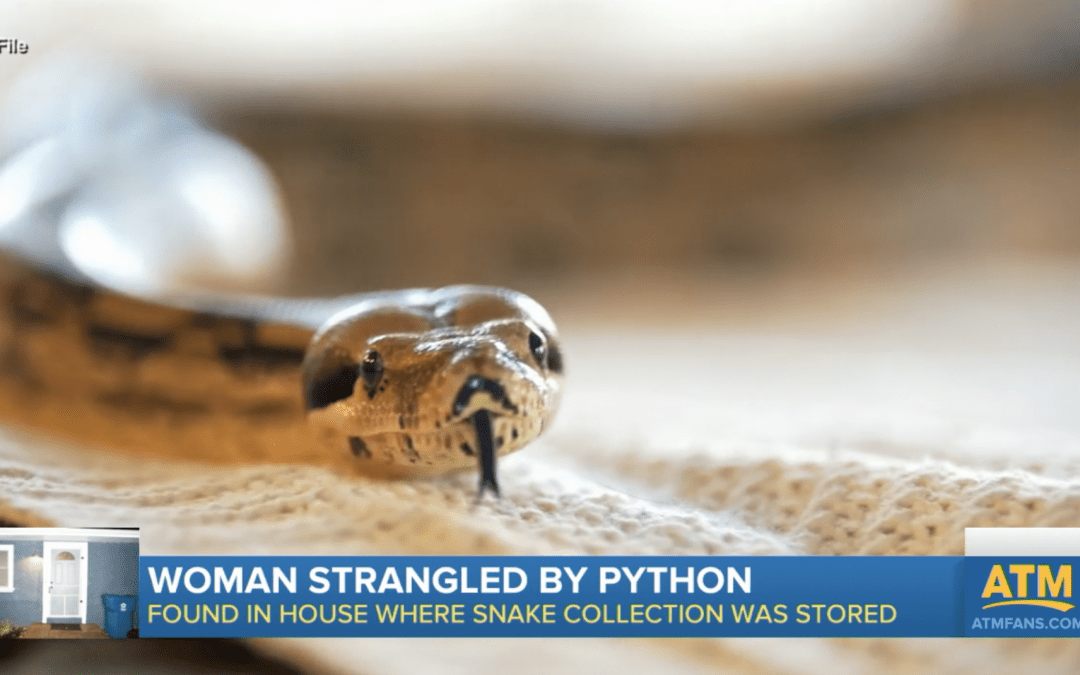Woman found dead with 8-foot python wrapped around neck