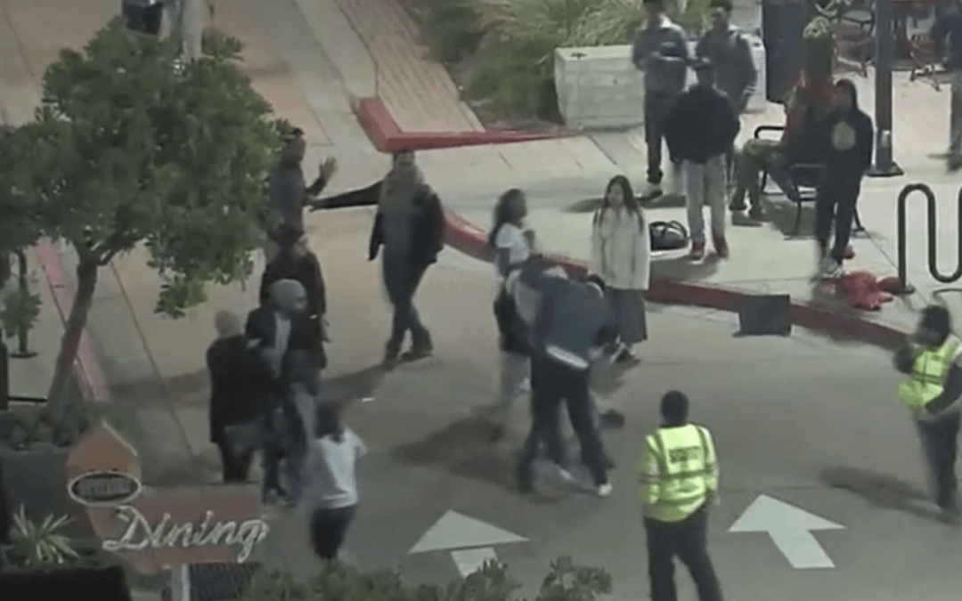 Off-duty California Highway Patrol officer assisting crime victim attacked by mob